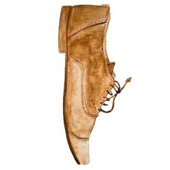 Watercolour shoe