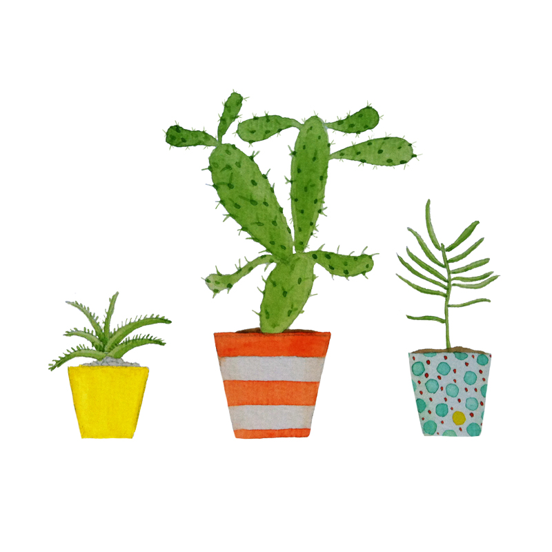 Joelix plants by Serena Olivieri